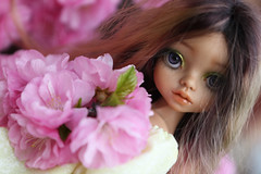 4H5A5393 (Yumi♡) Tags: bjd doll garden yumistudio flowers spring glacedolls 2019 yellowdress