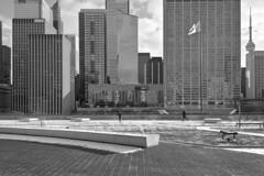 Toronto 2018_438_436 (c a r a p i e s) Tags: carapies cityscapes 2018 nikondf canada ontario toronto cityhall bw blackwhite blancoynegro architecture arquitectura fotografiaurbana urban urbanphotography urbanidad urbvanidad urbvanity urbanphoto streetphoto streetphotography streetlife
