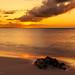 201904 Turks and Caicos-06587.jpg