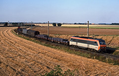 SNCF 'Sybic' 26145 arrives at Gevrey Yard on 29 July1999 with a short freight from Woippy conveying steel products. (mikul44171) Tags: 26145 sybic wheat stubble gevrey dijon steel girders july1999 cereal crop field