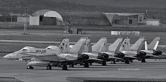 USMC F/A-18 HORNETS (Donald Douglas) Tags: red devils hornets fa18s usmc vmfa232