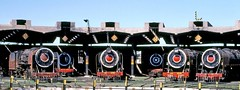 Southern Railway of India: Impressive array at the Madurai roundhouse (Mega Anorak) Tags: train railroad railway steam locomotive classyg classyp turntable roundhouse madurai tamilnadu india