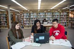 UWO_4253.jpg (uwoshkosh) Tags: uwo study library universityofwisconsinoshkosh group collaboration uwoshkosh uwfoxvalley