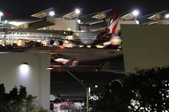 XA-VLN (atucker2976) Tags: triptocaliforniaspringbreakmarch2019 losangelesinternationalairportklaxlax losangelescalifornia airbusa320233wl volaris loscapistran