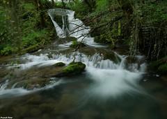 Cascade sur la Furieuse - Fonteny - Jura (francky25) Tags: cascade sur la furieuse fonteny jura franchecomté rivière printemps