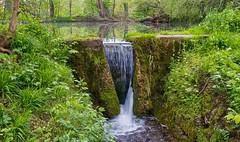 See Wasserfall Fischbach in Lochhausen (Chridage) Tags: lake waterfall brook see wasserfall bach lochhausen natur wasser water münchen bayern fischbach