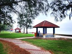 Morib, Banting, Selangor https://maps.app.goo.gl/xSd8rMGbpdWX6dH56  https://foursquare.com/soonlung81  https://maps.app.goo.gl/CPWsi  https://www.flickr.com/photos/32492415@N08/  https://www.instagram.com/s/aGlnaGxpZ2h0OjE4MDI1Njc3NzU0MTkwMDk5/?utm_source (soonlung81) Tags: semester reizen 여행 ชายหาด viaggio malaysia vakantie asian holiday 馬來西亞 การเดินทาง 휴일 trip fiesta vacances سفر strand 亞洲 пляж путешествие 海滩 spiaggia ビーチ 바닷가 度假 旅行 voyage عطلة праздник playa vacanza วันหยุด asia pantai ホリデー beach viaje plage reise urlaub travel