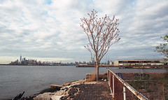 Sunset Park (neilsonabeel) Tags: nikonfe2 nikon nikkor film analogue brooklyn manhattan newyorkcity sunsetpark pier