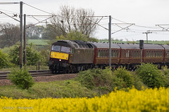 47746 Gamston  - 9th May 2019 (deltic17) Tags: westcoastrailways wcrc charter special loco locomotive locohauled heritage heritagediesel diesel class47 sulzer brush brush4 47 47746 countryside canon5dmk4 canon train rail railway yellow nottinghamshire