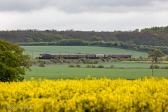 47746 Gamston 9th May 2019 (deltic17) Tags: westcoastrailways wcrc charter special loco locomotive locohauled heritage heritagediesel diesel class47 sulzer brush brush4 47 47746 countryside canon5dmk4 canon train rail railway yellow nottinghamshire