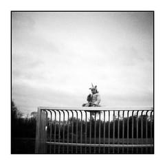 Einhorn auf Tor (bakmak71) Tags: dianamini swfilm agfaapx100 scanvomnegativ adonal toycamera einhorn fasching