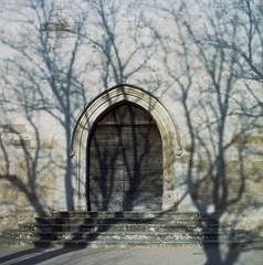 (cedricmarino) Tags: shadow tree church door portra400 120 medium format square yashica mat 124g analog film luberon