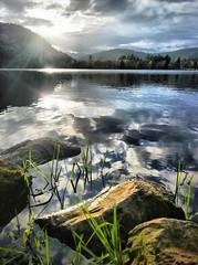 Longemer (denismartin) Tags: denismartin vosgesmountain mountains lorraine france grandest lacdelongemer xonrupt longemer lake spring reflection water weather cloudscape cloud sky