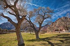 Spring Mountain Ranch, Nevada (Steve's stills) Tags: nevada ranch