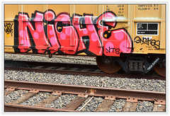 Snakes In a Lane (All Seeing) Tags: niche vts ttx tbox snakes