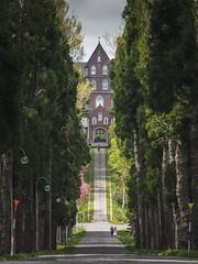 Church|Hokkaido (里卡豆) Tags: hokkaido 北海道 日本 jp olympusem1markii em1ii olympus40150mmf28