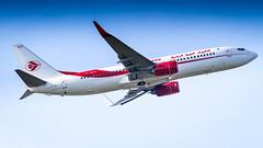Boeing 737-8D6(WL) 7T-VKH Air Algérie (William Musculus) Tags: plane spotting aviation airplane airport paris charles de gaulle roissy roissyenfrance lfpg cdg 7tvkh air algérie boeing 7378d6wl ah dah 737800 william musculus