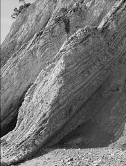 Hasselblad H1 TMax 100 HC-110 dilB (DzmitryParul) Tags: california h1 monochrome travel mediumformat april2019 hasselblad pacificocean tmax100 6x45mm blackandwhite film kodakhc110dilutionb