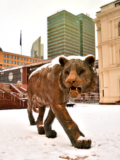City Tiger Oslo