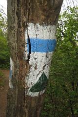 Hiking signs (aniko e) Tags: sign hiking outdoors balatonfüred tamáshegy hungary trail jókaikilató balatonfelvidékinemzetipark balatonuplandsnationalpark