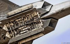 Ф-22 «Раптор» / Lockheed Martin F-22 Raptor (FoxbatMan) Tags: ф22 «раптор» lockheed martin f22 raptor avalon2019