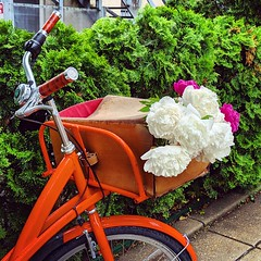 flowers at the market (ekelly80) Tags: dc washingtondc april2019 spring dupontcircle freshfarm dupontcirclefarmersmarket market weekend bike bicycle flowers peonies basket