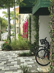 Urban Space (LarryJay99 ) Tags: cityplace westpalmbeachflorida colums bikes bines foliage flowers bougainvillea red tiles urban urbanscape scapes urbanalms