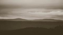 Ouachita Mountains. (issafly) Tags: monochromatic nikon sunset nikkor85mm explorearkansas d500 ouchitamountains ouchitas wanderfar blackwhite arkansas nationalforest arkansasoutdoors tree monochrome 2019 hiking mono landscape bw nature blackandwhite forest mountain naturalstate
