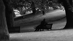 Alone in the world (patrick_milan) Tags: love parc brest finistere lovers amour bench banc