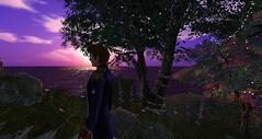 The Shrine Tree (Holocluck Henly) Tags: holodoc holocluck secondlife fantasyfaire relayforlife rfl