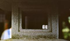 Stone Lamp (mrhayata) Tags: japan tokyo setagaya gotokuji temple mrhayata film rdpiii lamp