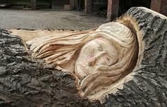 Carving (daveandlyn1) Tags: log carving erddig nationaltrust huawei p8lite2017 pralx1 smartphone psdigitalcamera cameraphone dayout