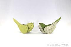 小鳥 / Little bird (Gen Hagiwara) Tags: origami paper folding bird genhagiwara
