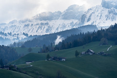 Ab vom Schuss (Joachim S.) Tags: berge eriz reust schnee wald teuffenthal cantonofbern switzerland
