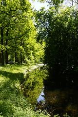 Hemmen 12-05-2019 (marcelwijers) Tags: hemmen 12052019 betuwe overbetuwe gelderland nederland niederlande netherlands pays bas
