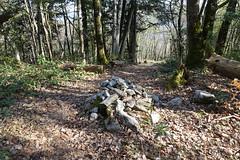 Hike around Pointe de Chenevier (*_*) Tags: bornes 2019 printemps spring april pointedechenevier sourcesdulacdannecy savoie europe france hautesavoie 74 annecy hiking mountain montagne nature randonnee walk marche afternoon