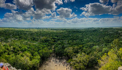 Panoramic view of the Yucatán Jungle Landscape from top of Nohoch Mul Pyramid - Cobá Maya Ruins - Coba Mexico (mbell1975) Tags: tulum quintanaroo mexico yucatán panoramic view jungle landscape from top nohoch mul pyramid cobá maya ruins coba peninsula yucatan mayan archeological park parc forest woods tree trees treetop pano panorama vista paysage