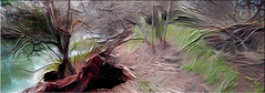 Troncos (seguicollar) Tags: art arte artedigital texturas virginiaseguí imagencreativa photomanipulation árbol raices paisaje ramas troncos rio agua water ribera orilla