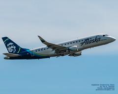 An Alaska Airlines ERJ-175LR Lifts Off Into the Skies Over Paine Field (AvgeekJoe) Tags: 100400mmf563 d7500 dslr e75l erj170200lr erj175 erj175lr embraer embraererj170200lr embraererj175 embraererj175lr n631qx nikon nikond7500 sigma sigma100400mmf563 sigma100400mmf563dgoshsmcontemporary aircraft aircraftbeacon airplane aviation beacon jetliner plane telephotolens