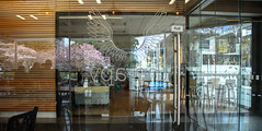 Wings and Blossom (Jocey K) Tags: christchurch newzealand architecture building reflections cafe windows tables chairs cbd city