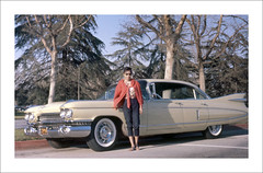 Vehicle Collection (9835) - Cadillac (Steve Given) Tags: familycar motorvehicle automobile cadillac 1960s