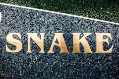 Snake (Thomas Hawk) Tags: america oregon portland portlandairport portlandinternationalairport usa unitedstates unitedstatesofamerica westcoast airport snake fav10