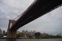 P5110705 (Vagamundos / Carlos Olmo) Tags: vagamundos vagamundos19usa new york newyork nuevayork usa eeuu
