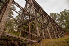 Noojee Trestle Bridge Walk (Lisajtoft) Tags: makes it make