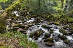 River Plym near Shaugh Prior, Dartmoor (Baz Richardson (now away for a few days)) Tags: devon dartmoor riverplym rapids rocks shaughprior goodameavyestate