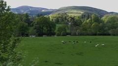 Llangollen Railway 120519_172314 (Leslie Platt) Tags: exposureadjusted straightened cropped denbighshire llangollenrailway berwyn deevalley llantysiliohall