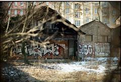 img048 (nicolasmathieudosiere) Tags: oldcamera minoltax500 35mm 50mm17 kodakgold analog film strasbourg filmisnotdead ishootfilm slr