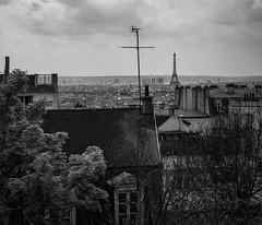 Paris-photo by Jonas Thorén