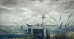 It Will Rain (larisalyn (Rachel)) Tags: clouds rain pelican lighthouse storm pier secondlife birds beach lostdreams