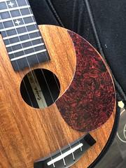2019 (Day 132 - 13th May): The prospective ukulele modification